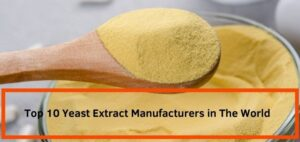 Top 10 Manufacturers in Yeast Extract in The World