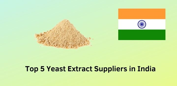 Top 5 Yeast Extract Suppliers in India